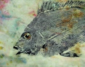 Porgy or Scup Fish Art rubbing (GYOTAKU) Beach House Decor picture Original on stained cloth