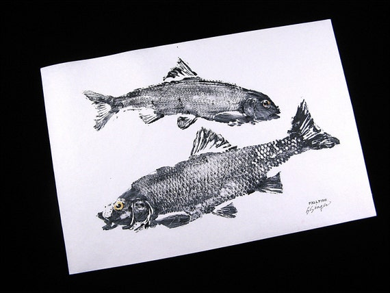 Two Fine Fallfish GYOTAKU Japanese Fish Rubbings Pisces on Rice paper 12X18