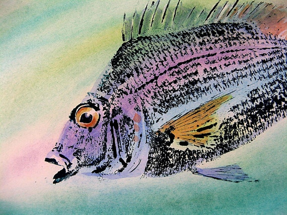 Porgy or Scup Original Fish Art GYOTAKU rubbing on hand colored cream stock