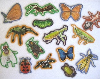 Insects Felt Board, Bugs Flannel Board Set, Science Felt Set, Homeschool Preschool