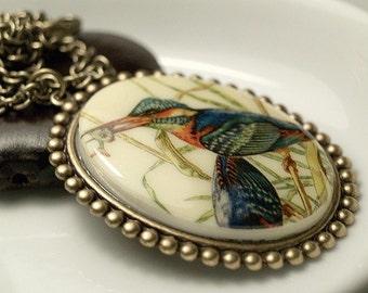 Vintage Bird Cabochon Necklace, colorful cameo bird necklace, oval cameo bird with fish necklace, bird cameo pendant, blue bird necklace