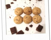 mexican chocolate chip with cinnamon, cayenne and dark chocolate chunks