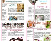 Back issue bundle - 4 issues of the Soda Lime Times Lampworking Magazine - Dec. 2011 through March 2012 by Diane Woodall