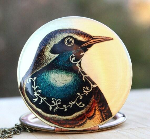 Bird locket - blue scroll brass vintage image locket
