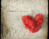 still life photography- red heart photo- love- Valentine- quote- conceptual- My Heart is Yours Forvever - fine art photograph 8x8 - sandraarduiniphoto