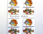 magnetic photographic bookmarks set of 4 of Rainbow Tropical Fish
