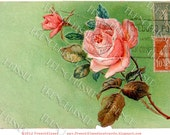 Instant Download Shabby Cottage Chic ROSE Collage Green Red French stamps antique Victorian Postcard DIGITAL Scan