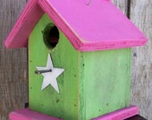 Chickadee Wren  Songbirds Primitive Birdhouse  Summer Green and Pink with White Star