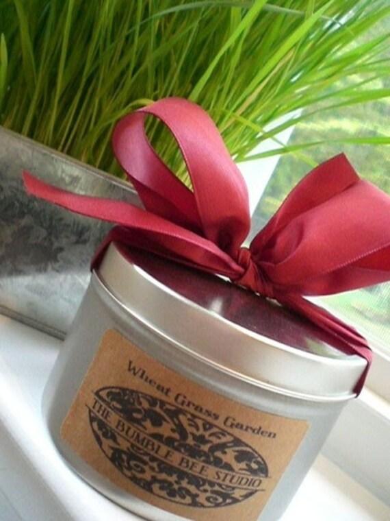 Indoor Wheat Grass Garden Kit ... summer in a can