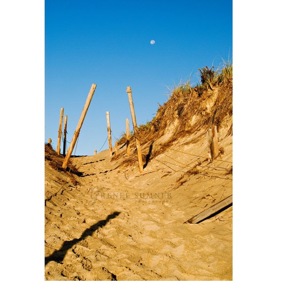 New England Series--Moon and Dune at Cape Cod