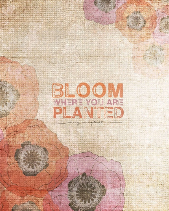 Bloom Where You Are Planted- Beautifully textured cotton canvas art print. Order as an 8x10 11x14 or 16x20 size.