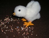 Lil spring peep 1 chick chicken Easter