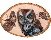 Hootbot owl illustrated Print 8x10