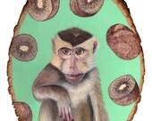 Monkey Trouble print 11x14