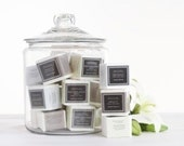 Sparkling Bath Tablets Like Seltzer for your Tub....in GINGER BLOSSOM Blend by Sweet Petula