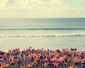 Nature photography, seaside photo, ocean photograhy, purple orange flowers, sunrise, beach decor,landscape photography - Morning Light