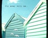 Turquoise beach photo, viewfinder photograph, TTV, beach decor, typography, blue, birds, summer wall art, beach wall art - Fly Away With Me