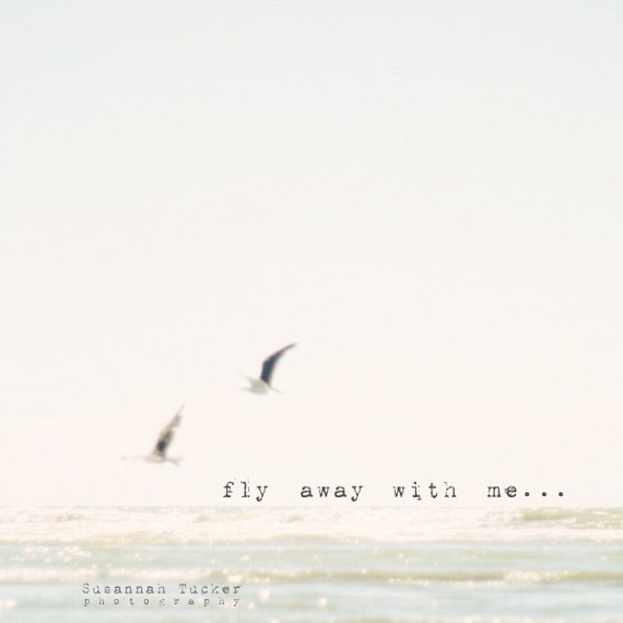 Beach photo, typography, ocean, glistening water, flying seagulls, birds - fly away with me to where we feel the ocean breeze