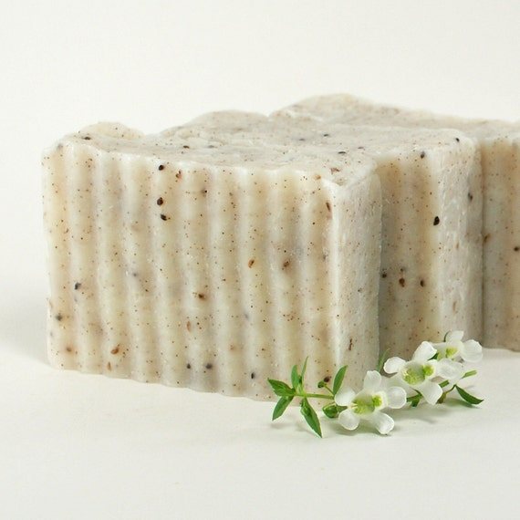 Gardener Scrub Soap, Gardener's Scrub Soap, All Natural & Unscented with Crushed Apricot Seeds, Red Raspberry, Cranberry Seeds