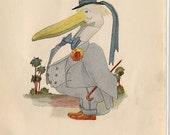Pelican /Puffin-004
