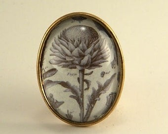 Spring Fling Brooch- vintage Victorian inspired brass thistle plant and weeds specimen pin