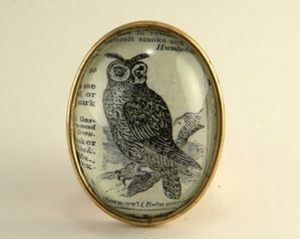 Wise Old Owl- vintage inspired Victorian owl bird dictionary defintion pin brooch