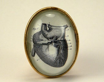 If I Only Had A Heart Brooch Anatomical Heart Engraving. Steampunk Valentine