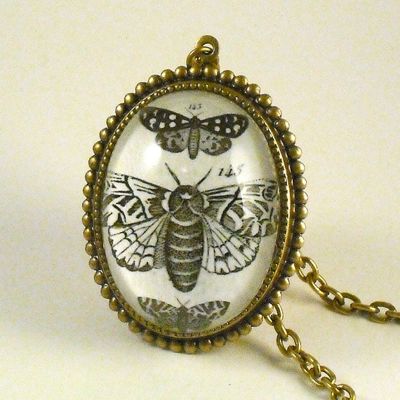 Moths Moths Moths- vintage inspired brass specimen engraving cameo necklace