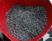 Montana Grown 1/2 pound Organically Grown Dried Lavender Buds