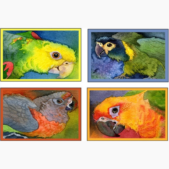 Parrots Gift Notes or Enclosures - 8 tiny Tropical bird Mini cards and envelopes