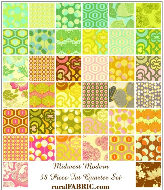 Amy Butler Midwest Modern Fat Quarter Set of 38 - Complete Collection