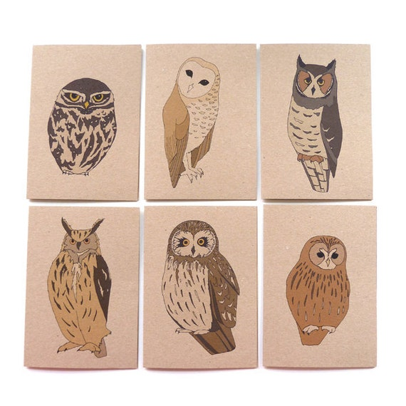 Set of six owl cards (100% recycled)