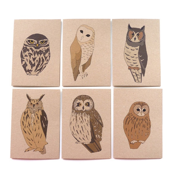 owl cards - set of 6 - owl card set / bird card set / recycled / eco friendly / owl card pack