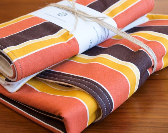 SALE Organic Baby Blanket and set of two Burp Cloths in SUNSET STRIPE, Save 30%