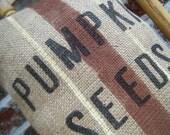 Autumnal Arts Series Pumpkin Seeds Grainsack Pillow