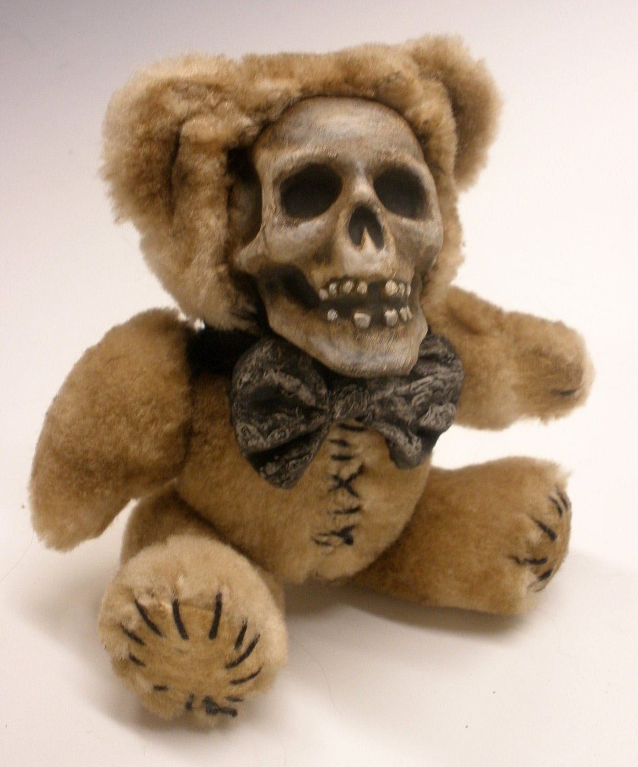 039a wild teddy bear ate my beaver039 and other creepy stories - 3 8