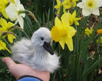 Needle Felted  Animal / Swan baby cygnet by Artist GERRY Lifelike OOAK