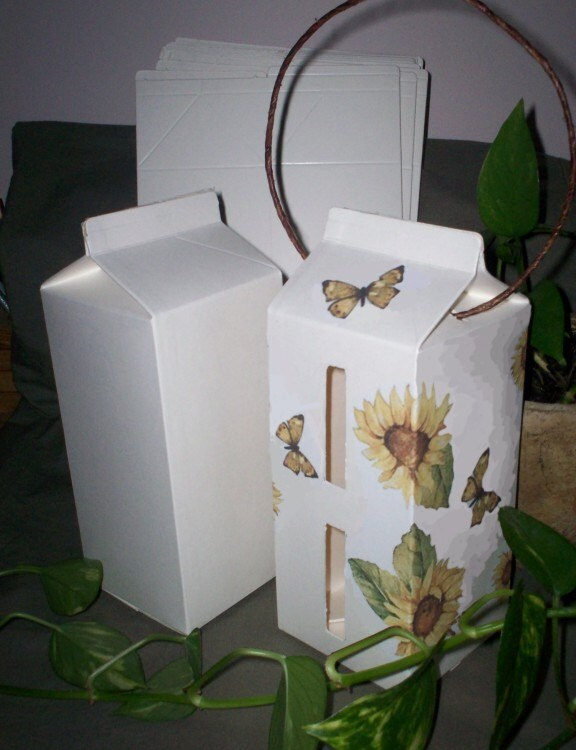 Make butterfly houses with 1 2 gallon milk cartons decorate - Decorate your own house ...