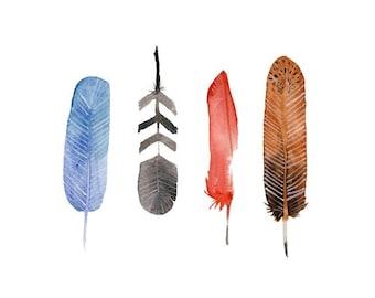 """Feathers 4x6"""" Velvet Giclee Print"""