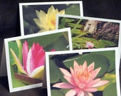 Water Lilies Note Cards