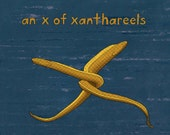 an x of xanthareels - limited edition print 1/100