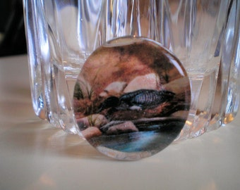 Loon Nesting Time Marble Magnet