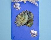 Sculpted shells