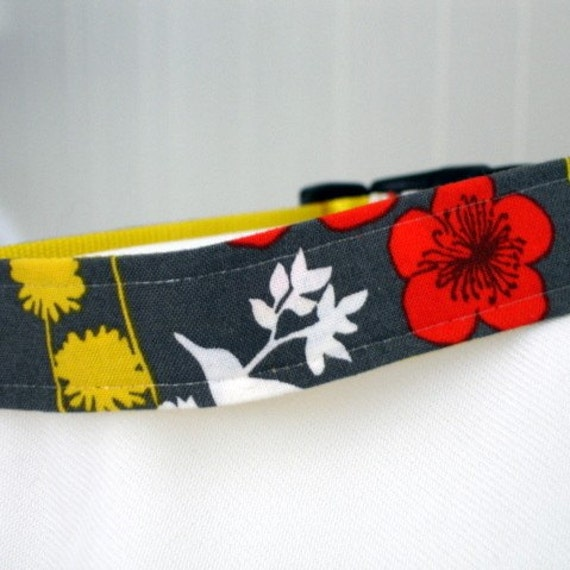 oh happy day dog collar, 1 inch wide, adjustable, small to medium, ready to ship