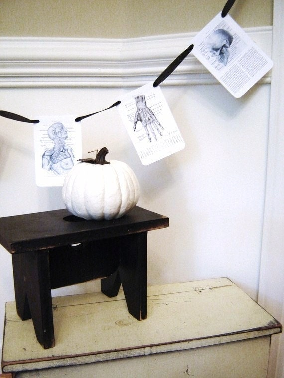 Vintage Anatomy Party or Halloween Garland