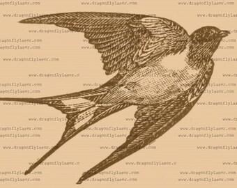 Swallow, vintage style digital delivered image