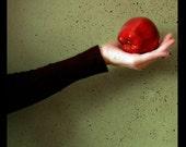 Surreal Apple Portrait, Apple Photograph, Red Apple, Hand, Snow White Fairytale Photo, Green, Black, Dark Art