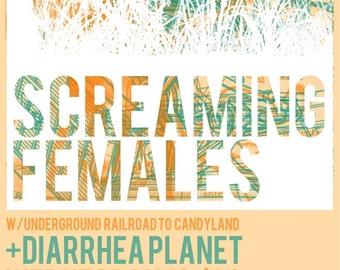 Screaming Females Screen Print Show Poster