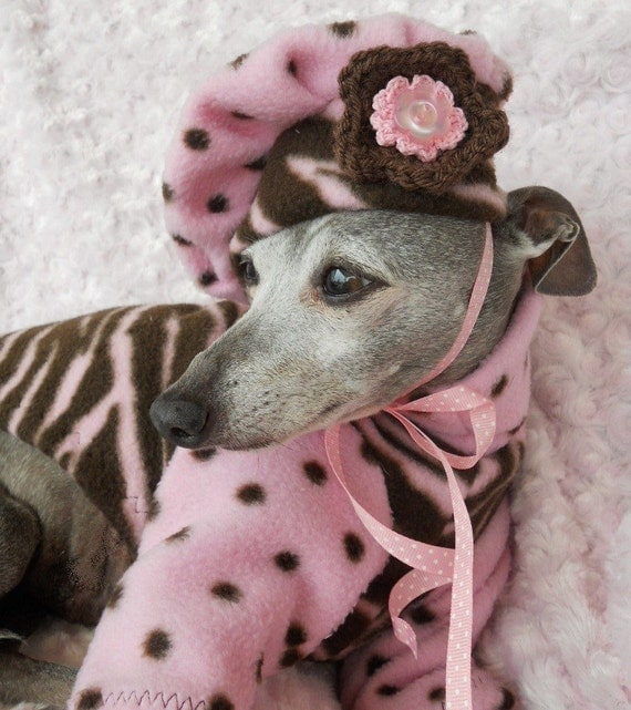 Trendy Zebra n Dots Fleece Sweater with Matching Hat for Italian greyhounds and small dogs