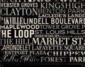 St. Louis Streets and Neighborhoods Canvas Art graphic art 18 x 24 by stephen fowler